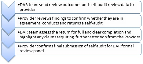 Self Audit Process